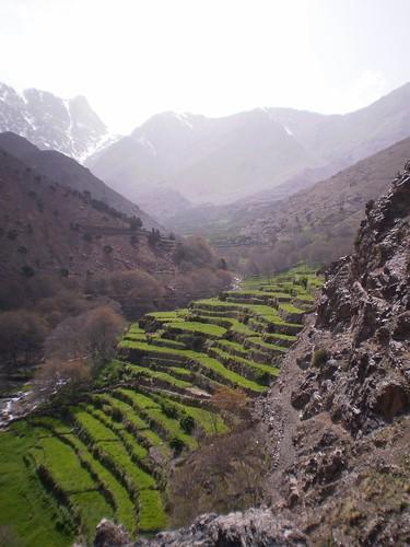 morocco timichi oukaimedene geo:lat=3119735241 geo:lon=778211832 geo:ele=2168871582