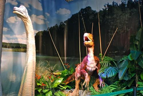 Exposicion de Carles Darwin y las especies extinguidas