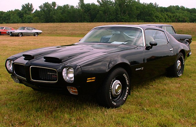 1972 Pontiac Firebird Esprit Related Infomation