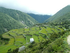 agriculture, village, field, mountain, valley, hill, hill station, highland, ridge, terrace, fell, landscape, rural area, plantation, mountainous landforms,