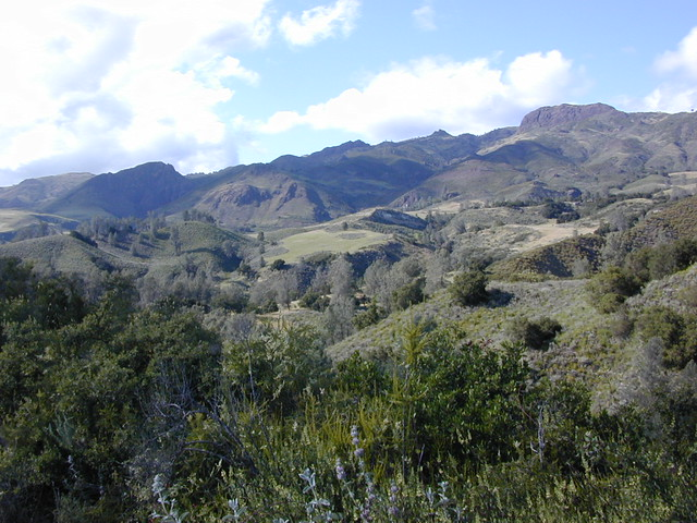View of Figueroa Mountain