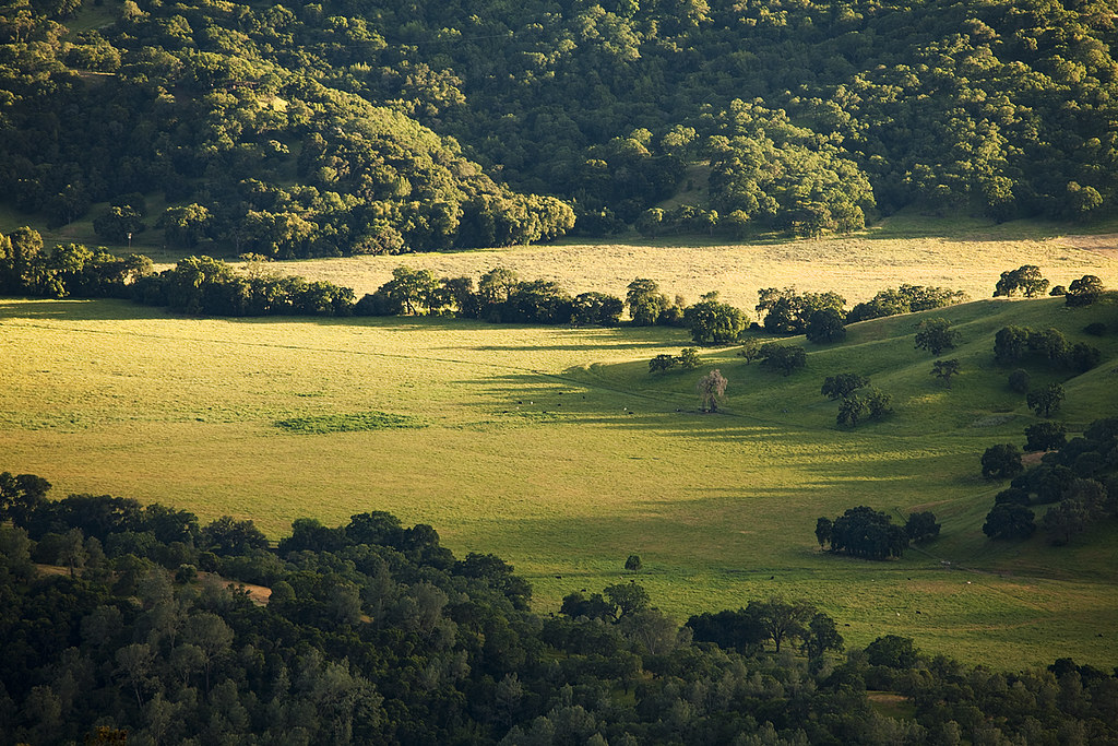 Down in the Valley: Northern California