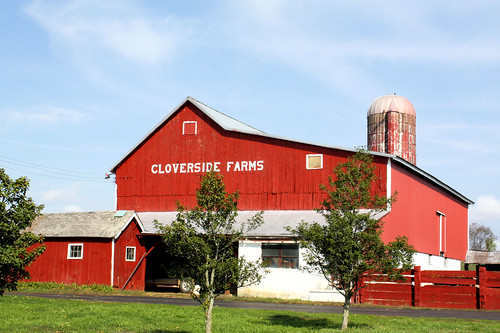 barn newjersey farm silo dairy