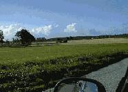 Ingelstrup Kepel set fra landevejen