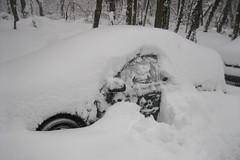 Accessed Car