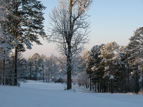 snow snowfeb2010