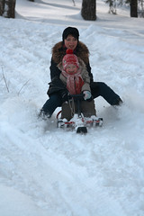 winter sport, winter, snow, sledding, winter storm, blizzard, freezing, sled,