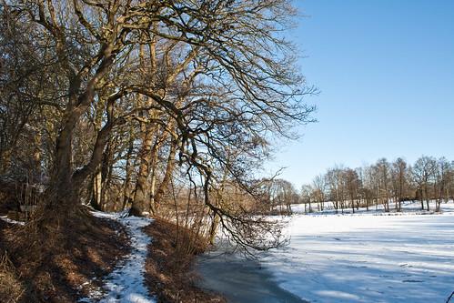 Mühlensee Norhastedt