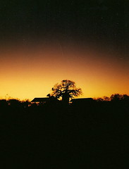 Kruger National Park - Aug 1995 - Baobab at Sunset