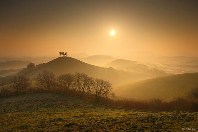 Dorset:  Colmer's Hill Mist (4 of 4).