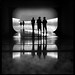 Museu Oscar Niemeyer by Jeffrey Shimizu
