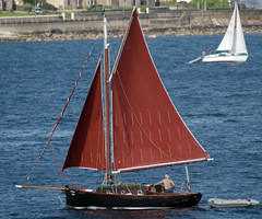 sail, sailboat, dinghy, keelboat, vehicle, sailing, galway hooker, skiff, mast, lugger, watercraft, dinghy sailing, boat,