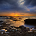 Hawaiian Turtle Sunset by kevin mcneal
