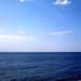 Where is the Horizon
