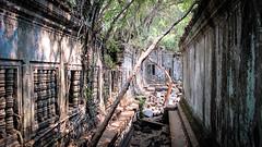 CAMBODIA 2016-227
