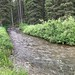 Small photo of Trail Creek