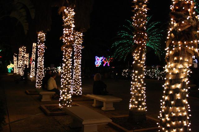 Christmas lights florida botanical gardens 2009 - Florida botanical gardens christmas lights ...