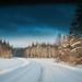 road by Sara Ingman