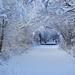 Tranns Pennine Trail by minimel82
