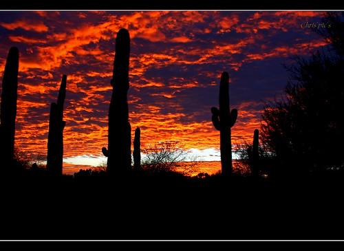 arizona sunrise amazing onceinalifetime unbelievable sooc riparianpreserve