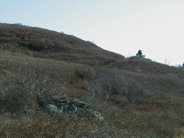 april 30  2003 - division e2 - falmouth  ma - bouchard oil spill