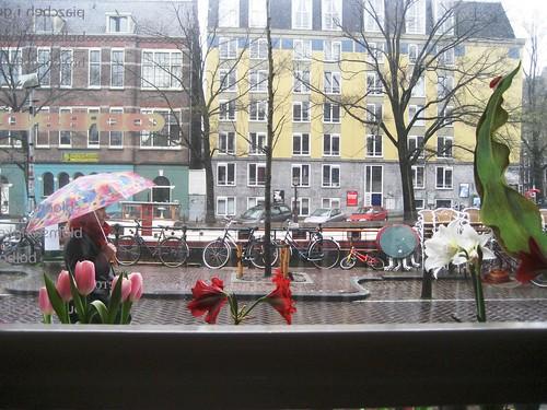 Amsterdam Tulip Museum Mar08-6
