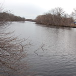 Charles River, 11 March 2010: Pale grey skies & waters