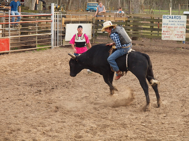 Rodeo Bucking Bulls http://www.flickr.com/photos/mrchriscornwell/4436609899/