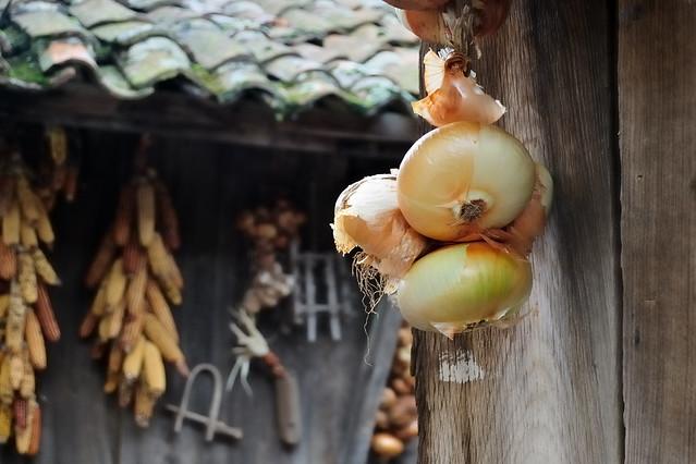 Cebollas en horreo