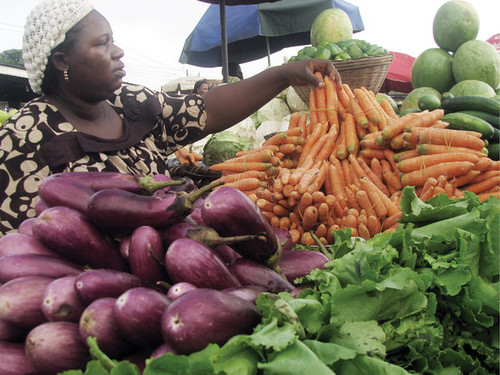 Agricultural production and distribution are essential in the process of African development. by Pan-African News Wire File Photos