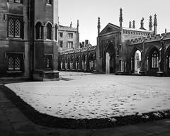 Cambridge 2009