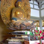 Buddha displayed in Byodoin