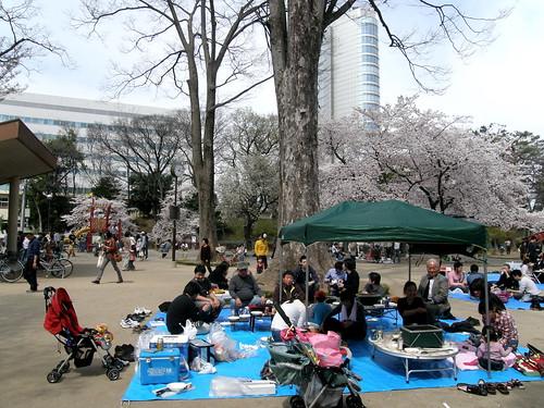 geotagged hanami takasaki 花見 群馬県 高崎 gummaprefecture geo:lat=36320205 geo:lon=139002475