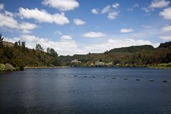 Lake Waipapa