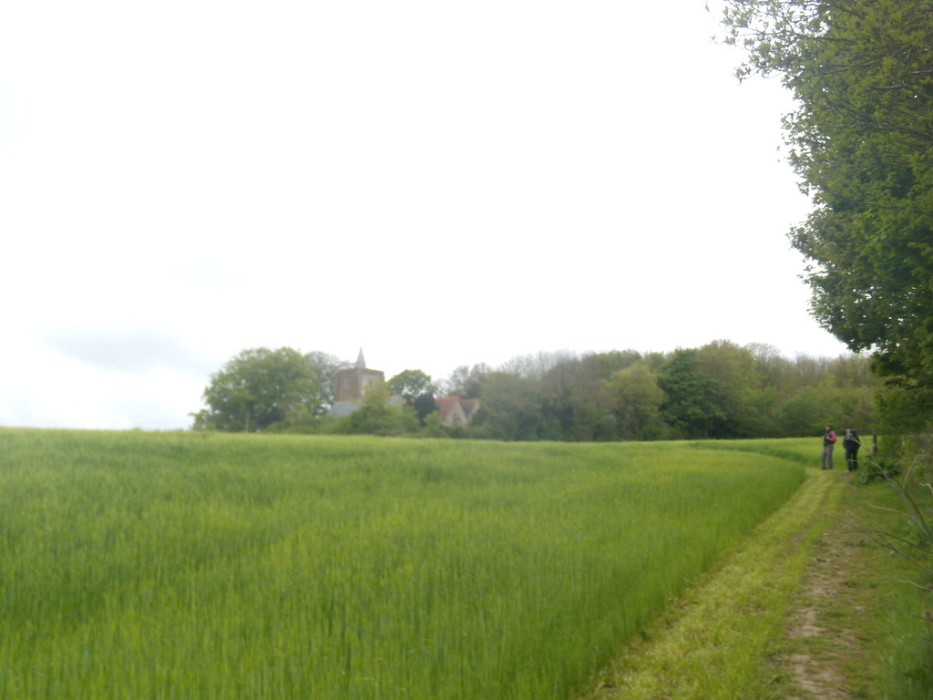 Barleyfield Yalding to Borough Green