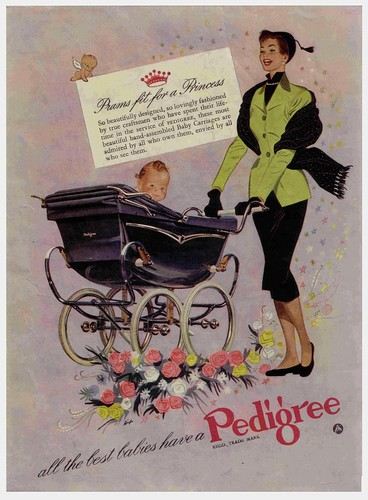 PEDIGREE PRAMS