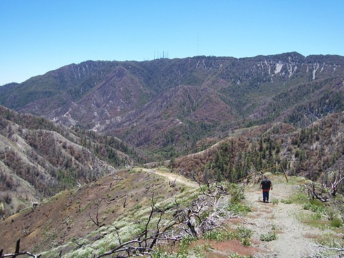 Mt. Wilson - Angeles National Forest - 20
