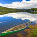 Waterlogged by Ryan C Wright