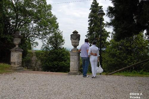 Primavera del Prosecco Prosecco_2_Conegliano_2010_014