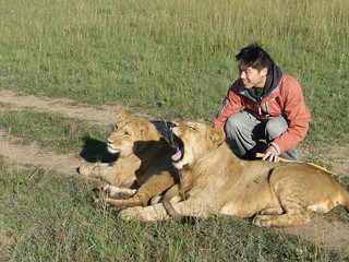 Walk with lions near the city  - Things to do in Livingstone