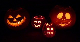 Our 2010 pumpkins
