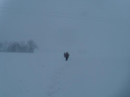 More snow DSCN8516