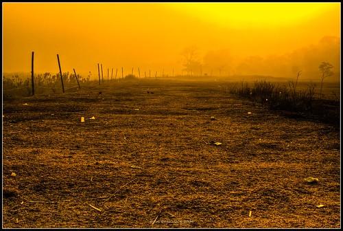 mist sunrise canon nationalpark mornings 1855mm assam kaziranga kaziranganationalpark rebelxs eos1000d