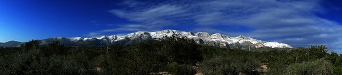 Montsià nevat