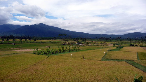 Elevation Of Lake Rawa Pening Waduk Rawapening Semarang Central Java Indonesia Maplogs