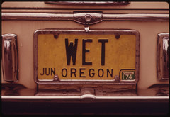 """An Oregon Personalized License Plate with the Letters """"Wet""""...11/1973"""