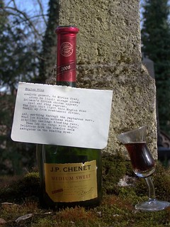 Herman Melville: Magian Wine [4]