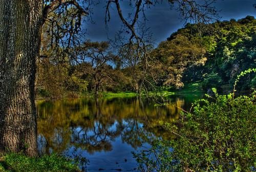 reflections spring pond hike wildflowers picchettiranch 3shothdr willandtheresa redletterhike