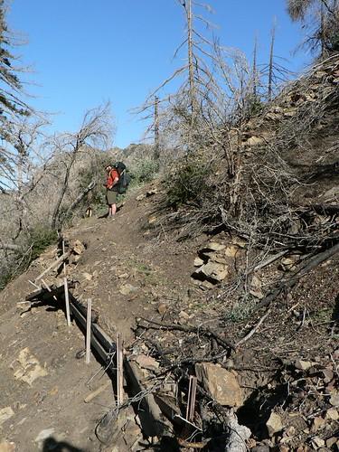 Trails?