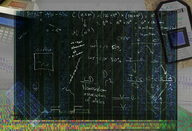 Bioinformatics Montage 2